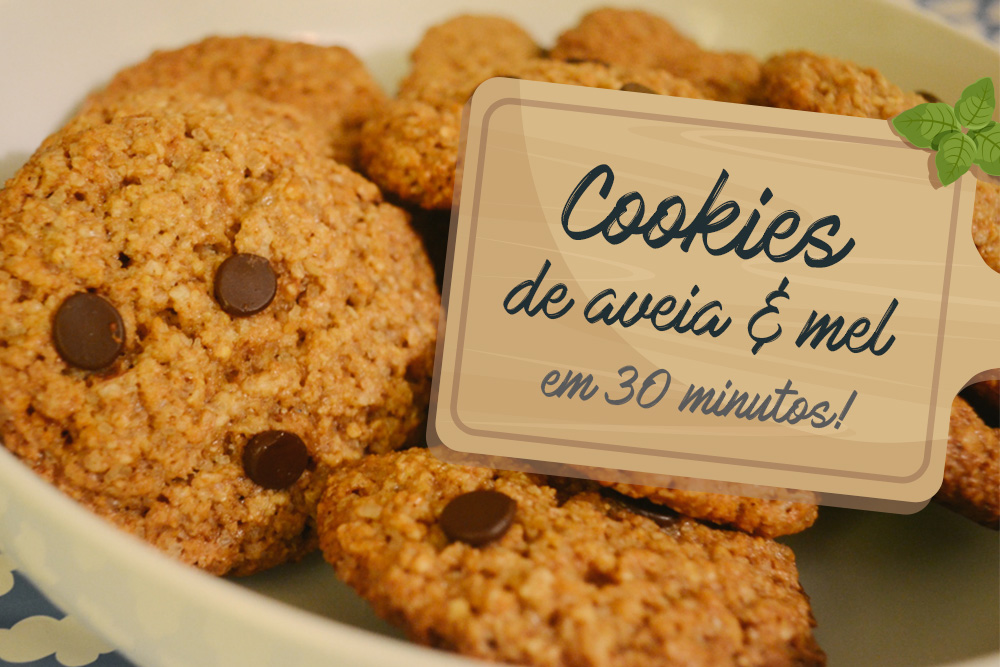 capa_cookie_integral_aveia_mel_fit_healthy_saudavel_dieta_reeducacao_alimentar_