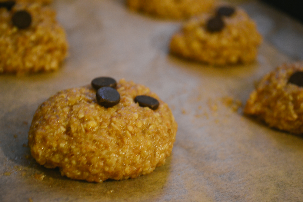 cookie_integral_aveia_mel_fit_healthy_saudavel_dieta_reeducacao_alimentar_-4