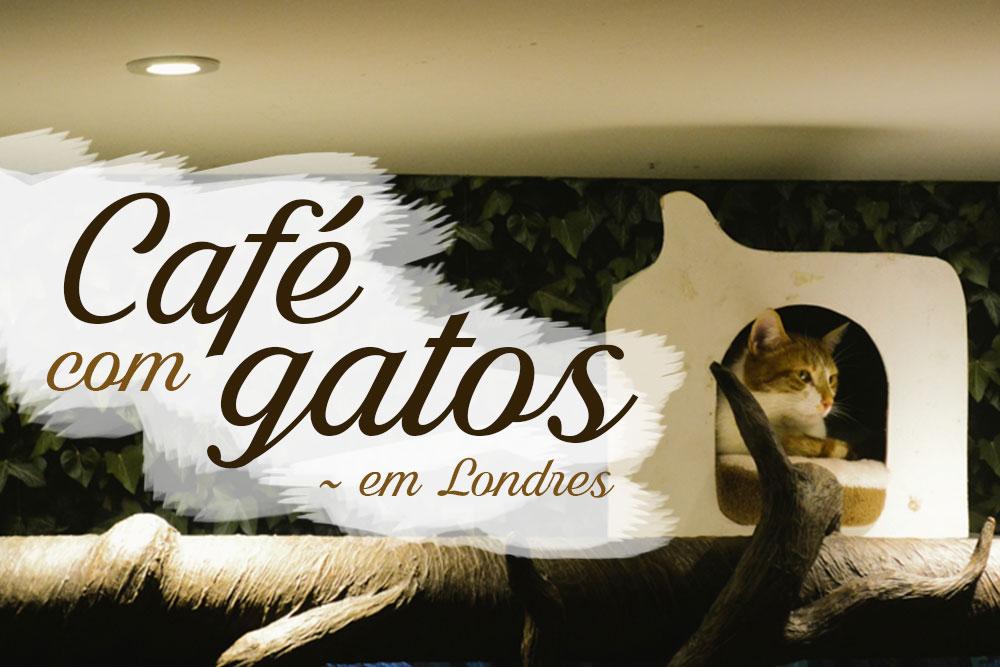 capa-cafe-gatos-londres-cat-cafe-london-lady-dinah-viagem-trip-dicas