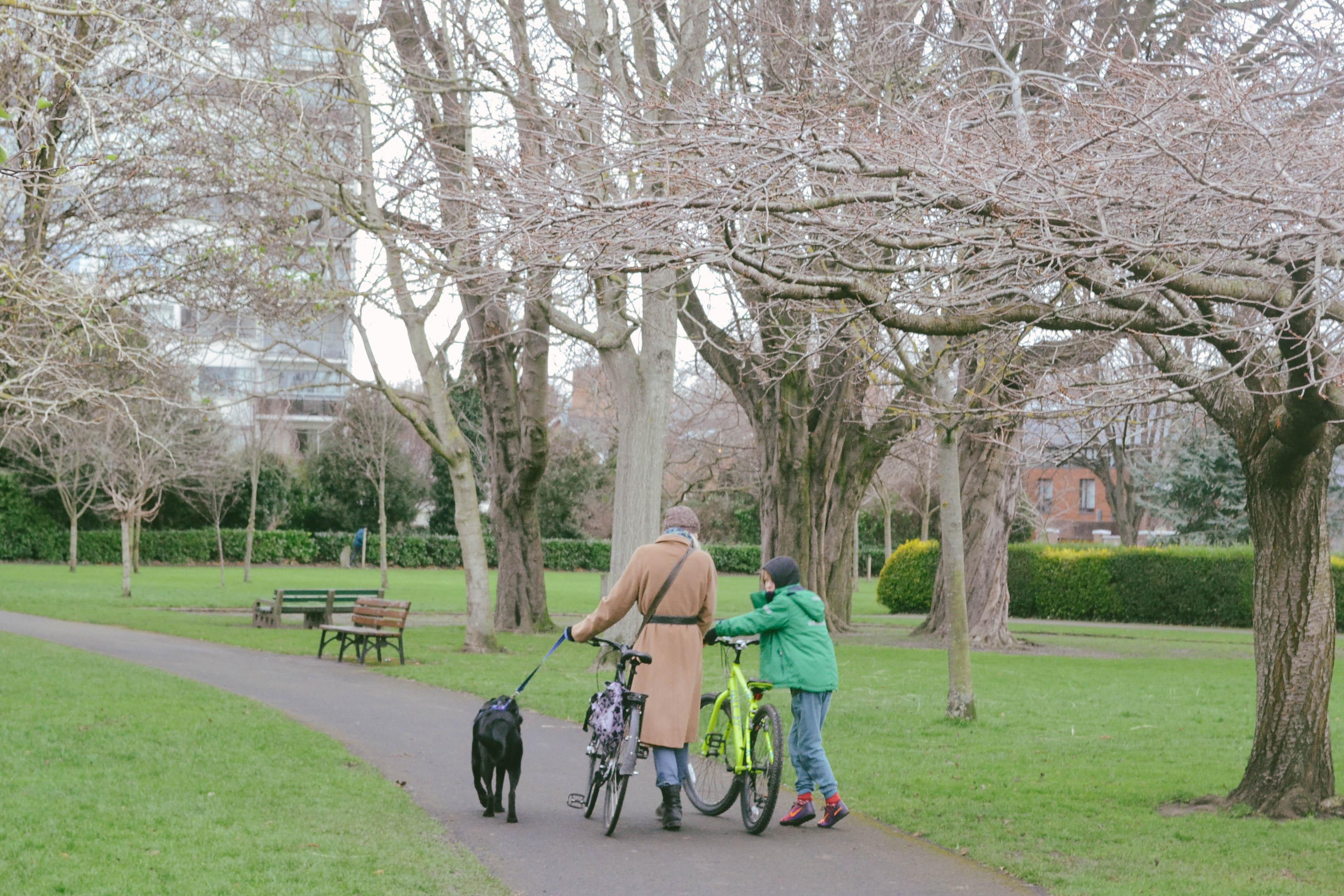feira-comida-market-herbert-park-ballsbridge-passeio-domingo-sunday-food-park-dublin-ireland-irlanda-dicas_-14